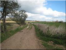 SK2139 : Bonnie Prince Charlie Walk by David Stowell