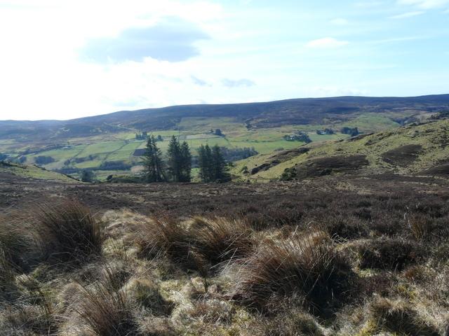 Moorland near Loch Muidhe.