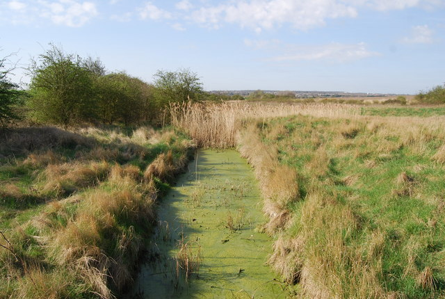 Stagnant ditch by Water Treatment Works