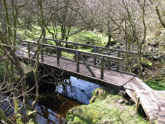 Footbridge in Shielhill Glen