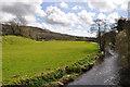 SN4110 : Gwendraeth Fach valley south of Llandyfaelog by Mick Lobb