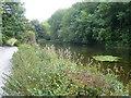 SK1865 : Lathkill Dale - River Lathkill approaching Weir by Alan Heardman
