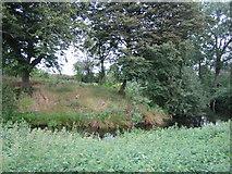 SP7219 : Pond near Upper South Farm 1 by Andy Gryce