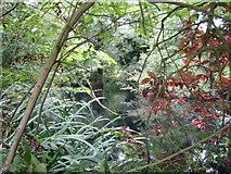 SP7219 : Pond near Upper South Farm 3 by Andy Gryce
