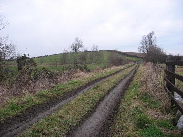 Lane to Wildgoose Lodge, Reaghstown