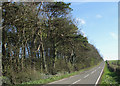 SS8479 : Country road to the west of Tythegston (2) by eswales