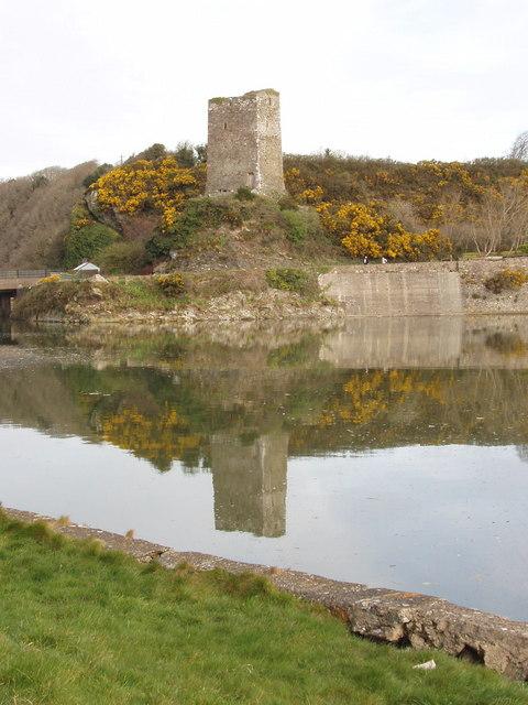 Ferrycarrig castle
