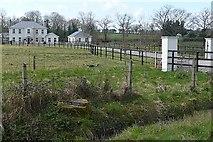 R6453 : Cunnilee by Graham Horn