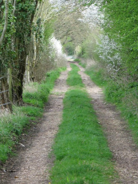 Bridleway to A31