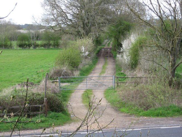 Bridleway towards River Stour