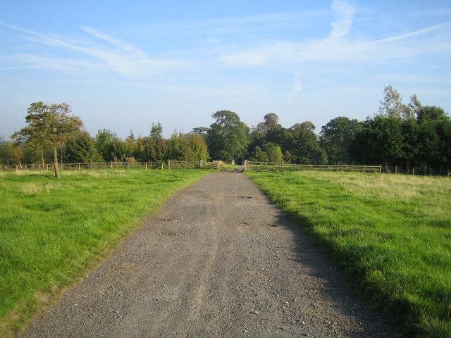 Track near Doddershall House 2