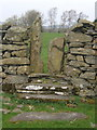 SD2985 : Stile, or gap in the wall by Andrew Hill