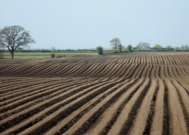 Farmland near Woodseaves