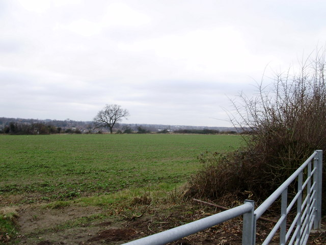 Farmland to the south of Covert Lane