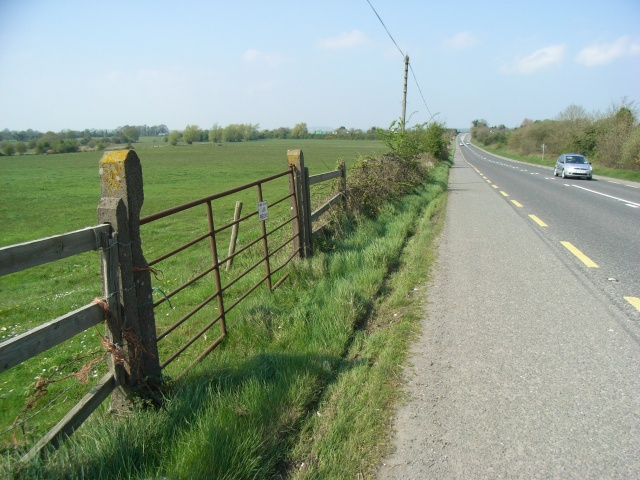 Gate Beside the N2 at Thurstianstown. Co. Meath