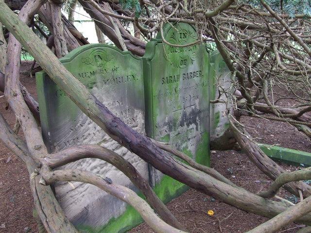 Gravestones in Doveridge churchyard