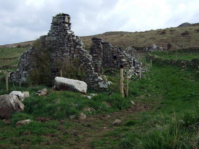 Maes-y-mynydd (4)