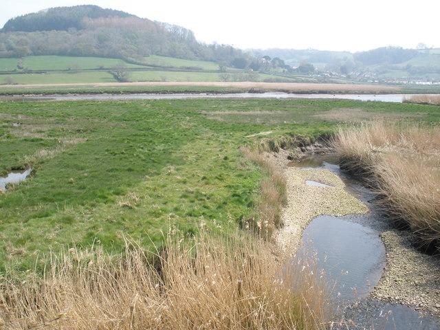 Creek, near the Axe estuary
