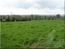 H6056 : Ballynasaggart Townland by Kenneth  Allen