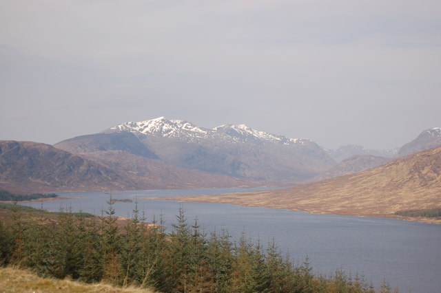 Forestry above Loch Loyne