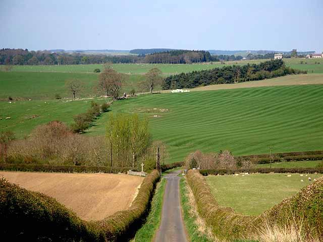 Northumbrian landscape