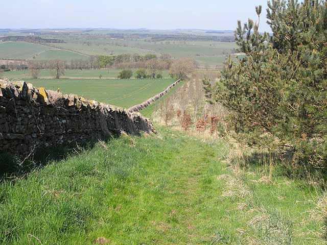 St Oswald's Way, near New Bingfield