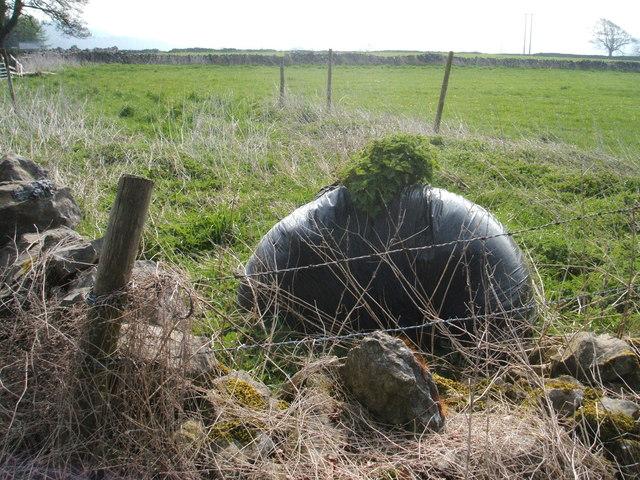 Rural grow-bag