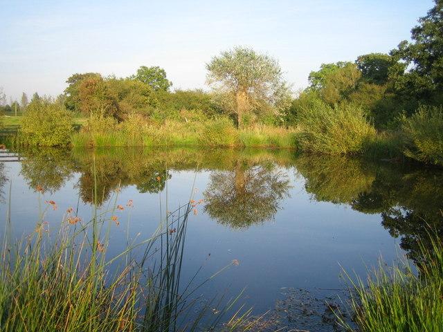 Pond near River Ray 2