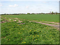 TF4806 : A farm track by Evelyn Simak