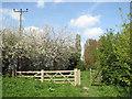 TF4806 : A footpath gate by Evelyn Simak