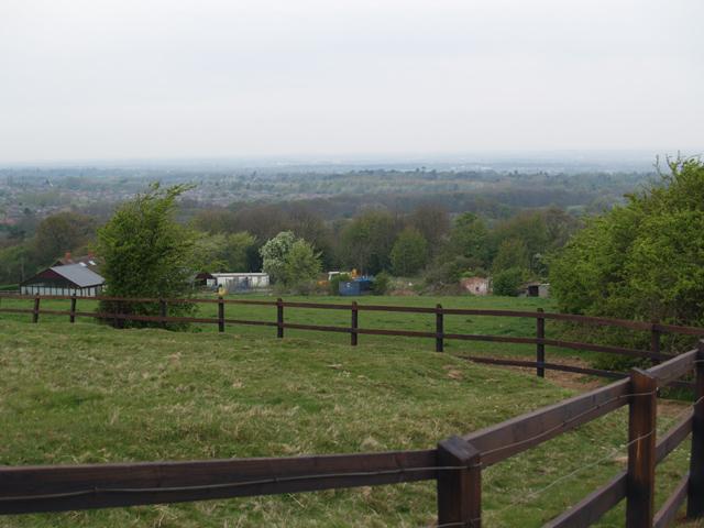 Pasture land, Hambleton Hill