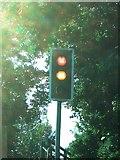 TL3808 : Dobb's Weir traffic lights by Matthew Singh