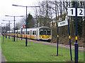 TQ2564 : Grass on the platform by Stephen Craven