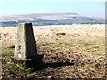 SD7115 : Trig Point on Cheetham Close by Bryan Pready