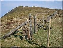 NY1119 : Fence Corner, Blake Fell by Michael Graham