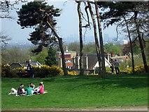 TQ2686 : Sunday afternoon on the Heath by ceridwen
