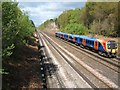 SU9156 : Railway by Gapemouth Plantation by Paul E Smith