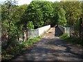 SU9156 : Gapemouth Bridge by Paul E Smith