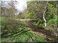 NY9984 : River Wansbeck at Kirkwhelpington by Oliver Dixon