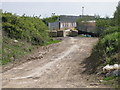TL1996 : Wymans bridge seen from Hicks lane by Michael Trolove