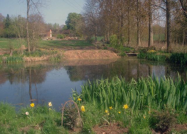 Pond near Park House - 1