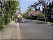 TQ2688 : Wildwood Road by Shaun Ferguson