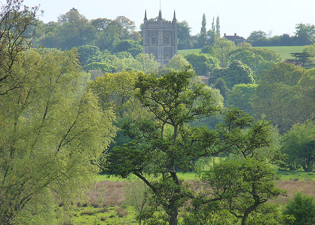 Dedham St Mary's in a sea of trees