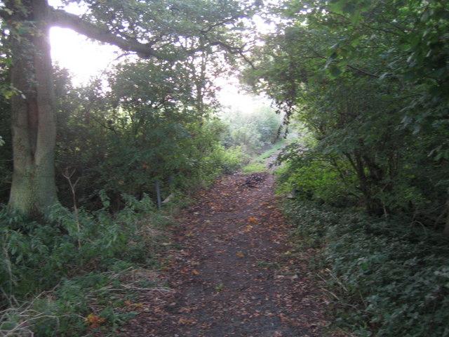 Three Points Lane, Finemere Hill 4
