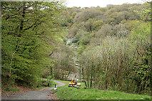 SX4970 : Buckland Monachorum: site of Walkham viaduct by Martin Bodman