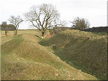NY9569 : The north defensive ditch of Hadrian's Wall east of Greenfield Farm (3) by Mike Quinn