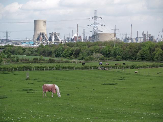 Farmland near South Lackenby