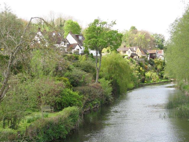 Back gardens in Spetisbury