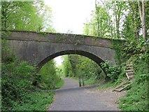 ST9102 : Old Railway Bridge by John Palmer