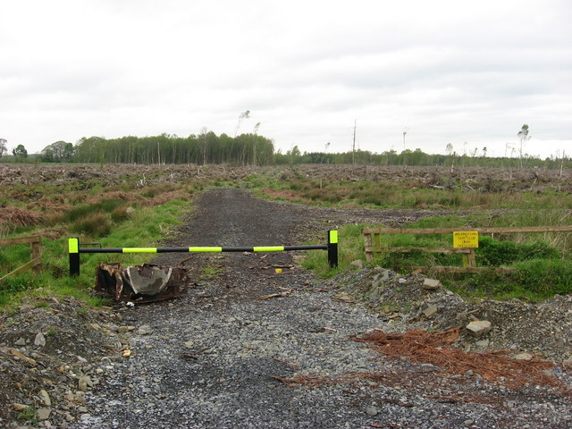Clear-felled forest at Oristown, Co. Meath